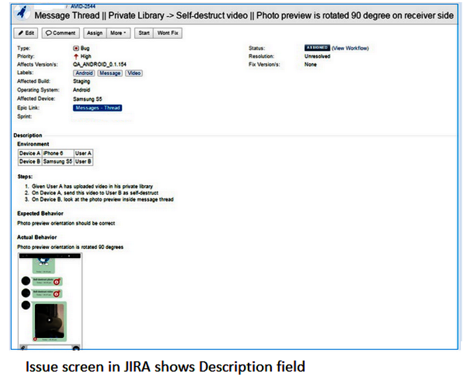 The JIRA issue formatting screen